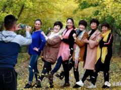 """首届银杏节""""银杏美""""拍客大赛将于10月28日举行"""