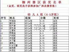 2017奥地利莫扎特国际钢琴大赛(中国-广西柳州分赛区)获奖名单